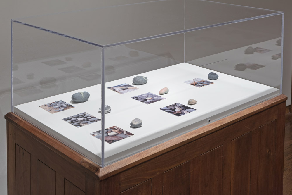 seven ceramic stones in a vitrine next to photos of their döpplegangers on a beach